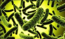 Народные средства от дисбактериоза у детей и взрослых
