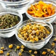 Травы и чаи, полезные для печени